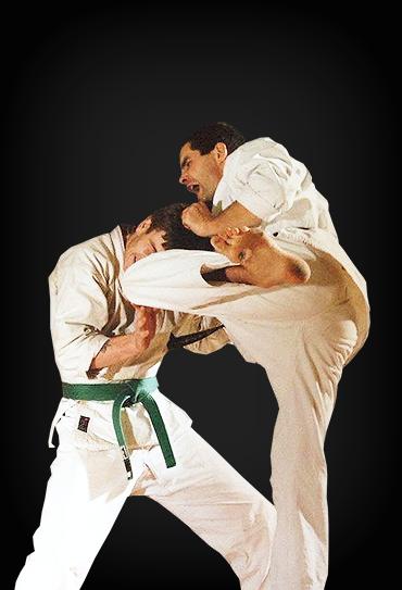 Senior Martial Arts